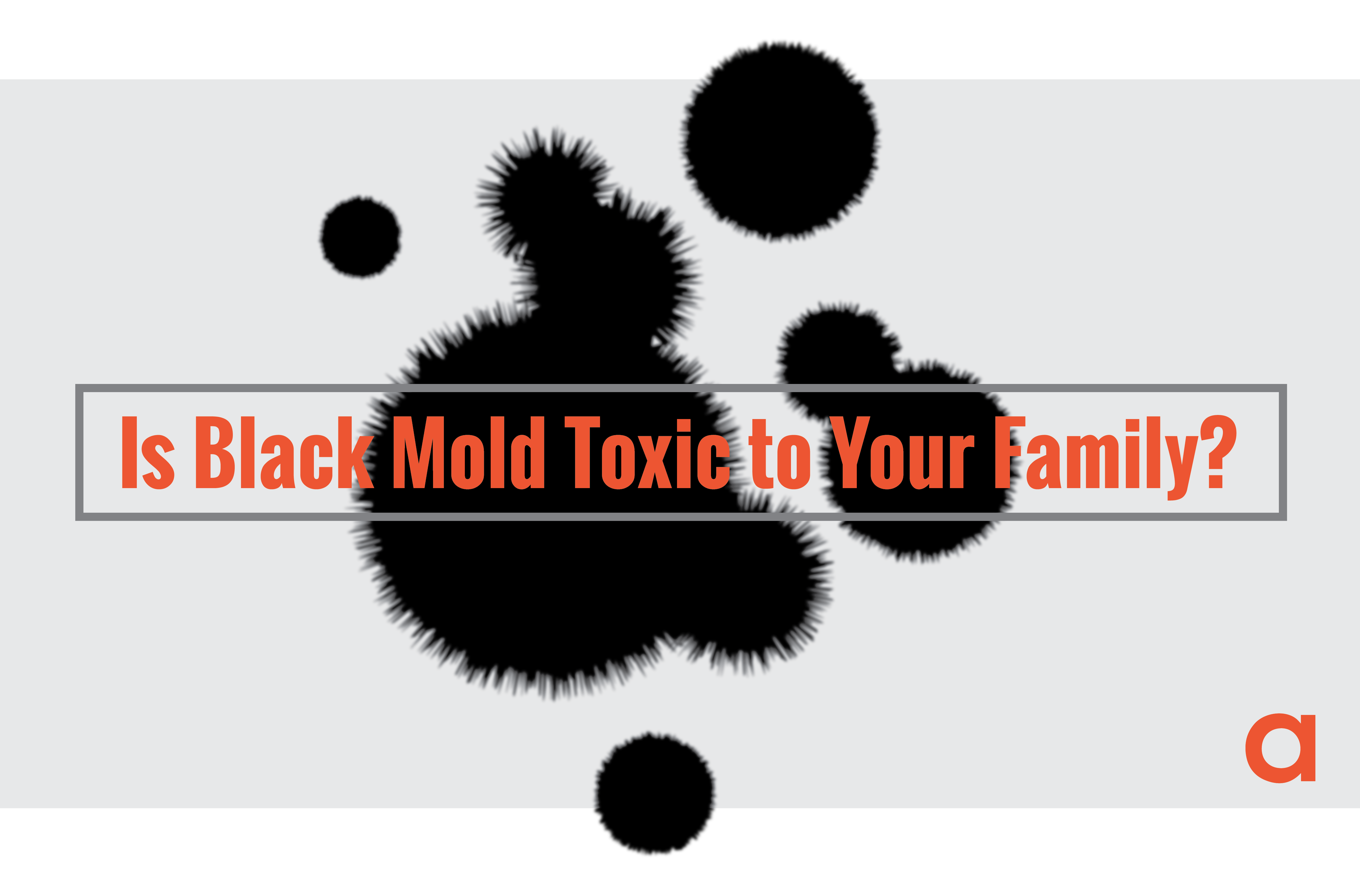 Is black mold toxic to your family?