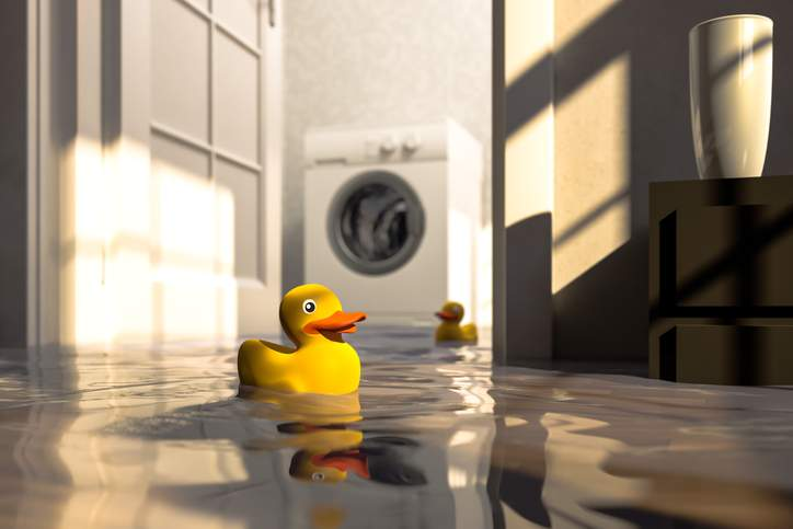Rubber duck floating in a flooded home